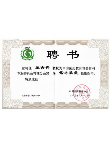 中国医药教育协会骨科专业委员会