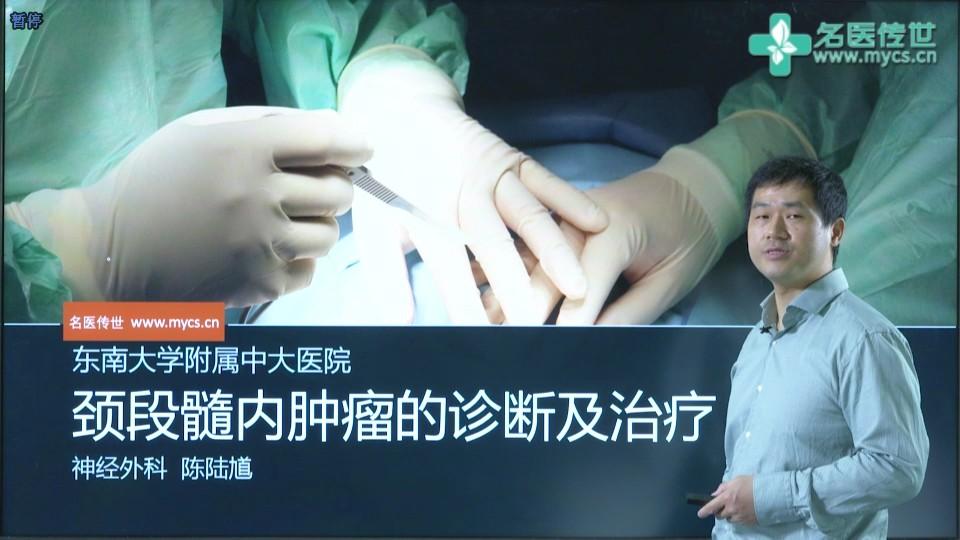 陈陆馗:颈段髓内肿瘤的诊断及治疗