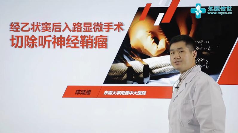 陈陆馗:经乙状窦后入路显微手术切除听神经鞘瘤