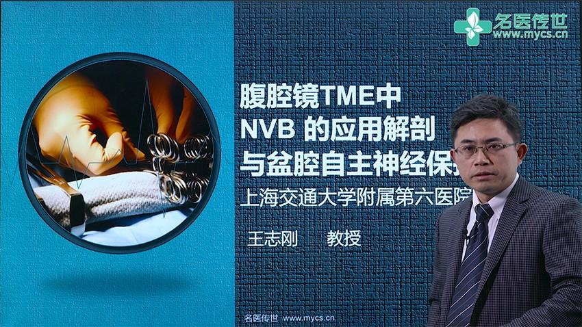 王志刚:腹腔镜TME中NVB的应用解剖与盆腔自主神经保护
