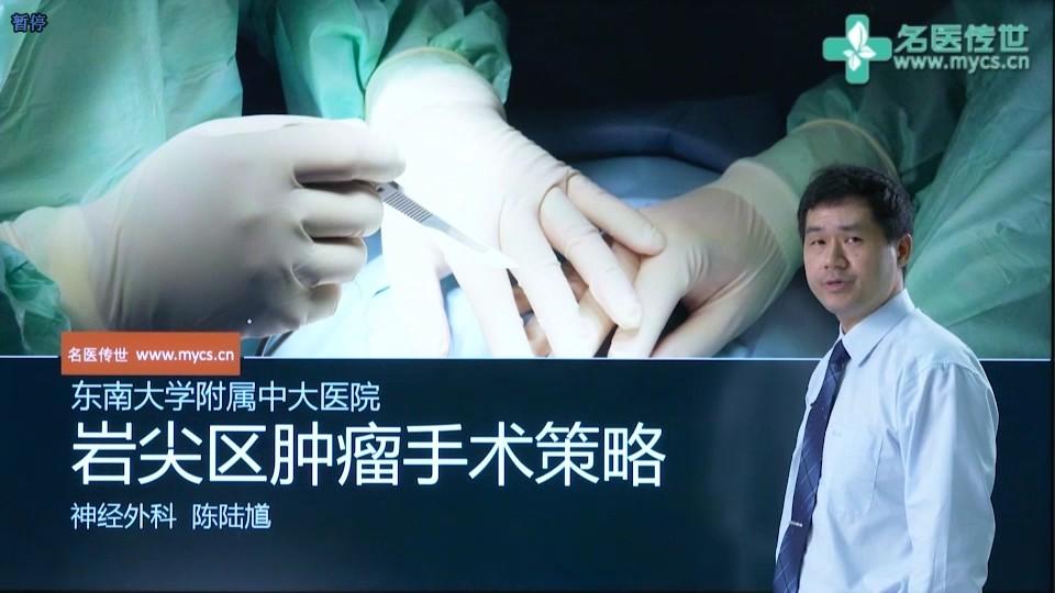 陈陆馗:岩尖区肿瘤手术策略(第1P-总2P)