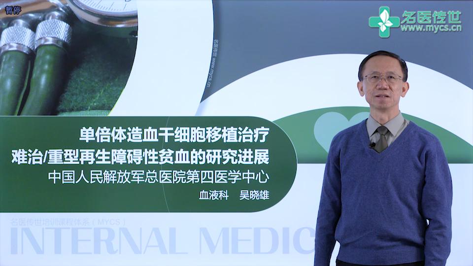 吴晓雄:单倍体造血干细胞移植治疗难治或重型再生障碍性贫血的研究进展(第2P-总2P)