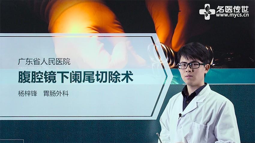 杨梓锋:腹腔镜下阑尾切除术(第2P-总2P)