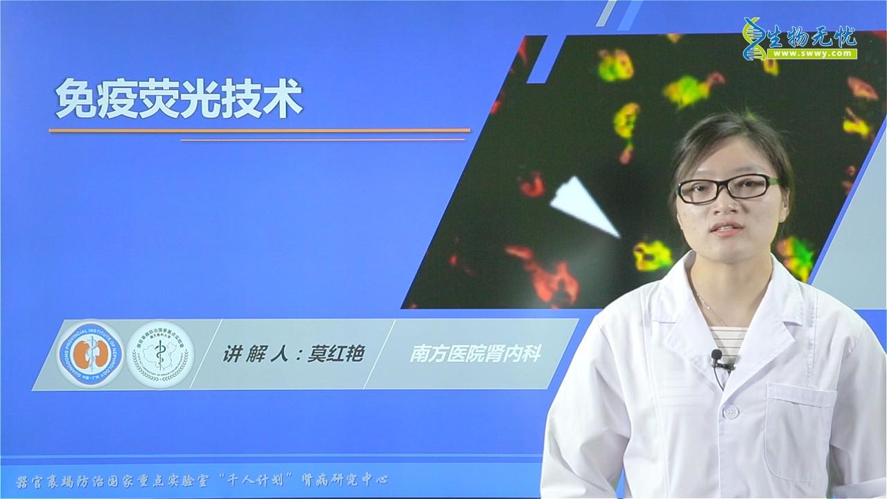 莫红艳:免疫荧光技术