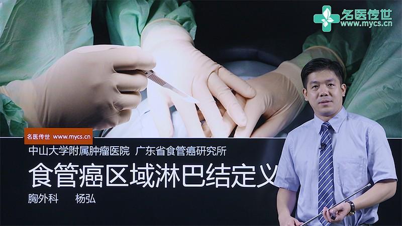杨弘:食管癌区域淋巴结定义(第1P-总2P)
