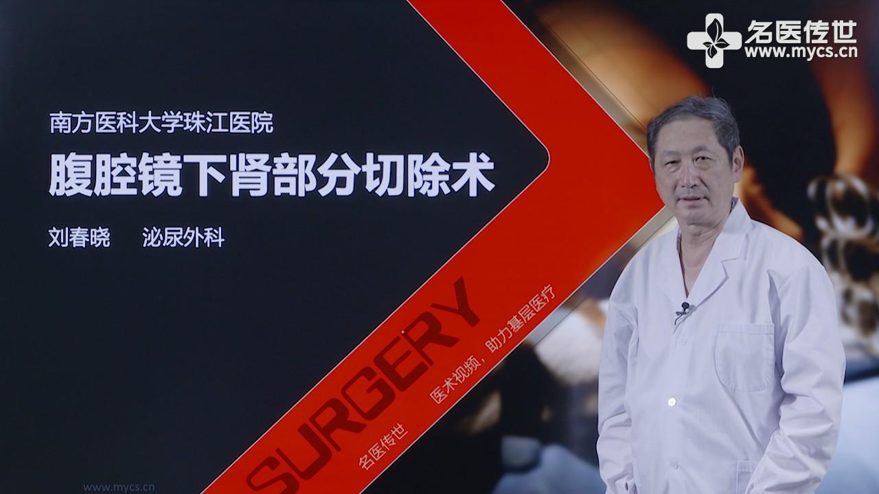 刘春晓:腹腔镜下肾部分切除术(第2P-总2P)
